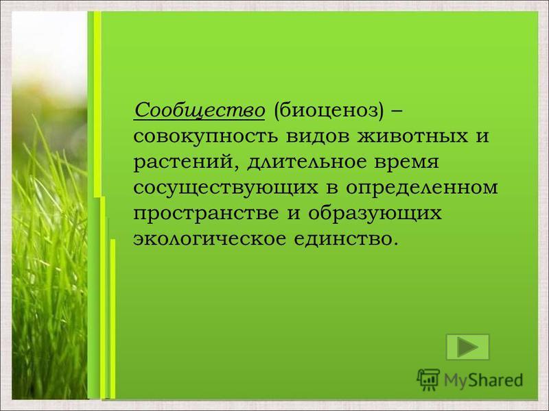 Сообщество (биоценоз) – совокупность видов животных и растений, длительное время сосуществующих в определенном пространстве и образующих экологическое единство.