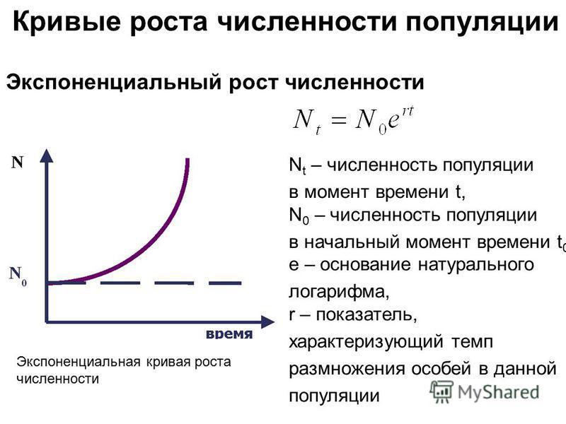 Экспоненциальная кривая роста численности Кривые роста численности популяции Экспоненциальный рост численности N t – численность популяции в момент времени t, N 0 – численность популяции в начальный момент времени t 0, е – основание натурального лога