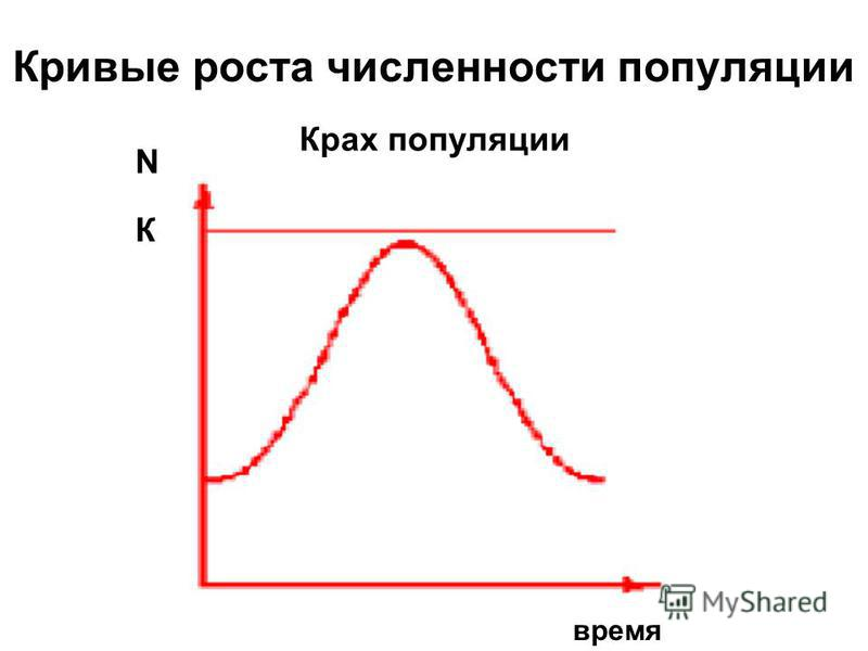 Кривые роста численности популяции Крах популяции N время К