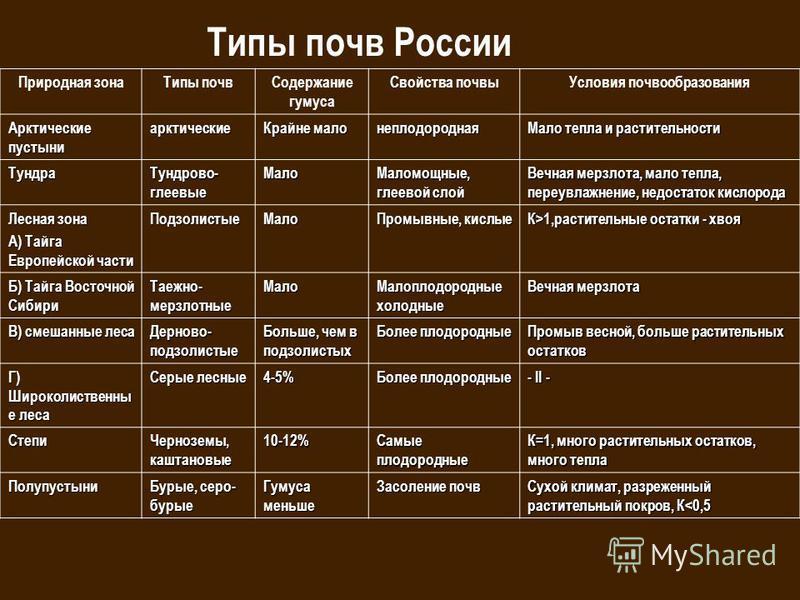 Скачать бесплатно конспект географии 8 класс зональные типы почв россии