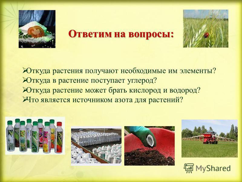 Ответим на вопросы: Откуда растения получают необходимые им элементы? Откуда в растение поступает углерод? Откуда растение может брать кислород и водород? Что является источником азота для растений?
