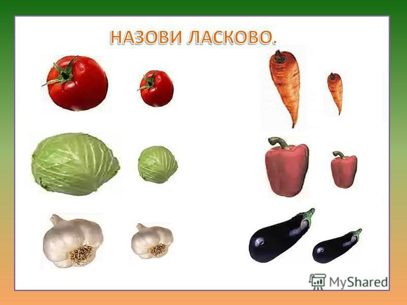 Какой овощ где находится?