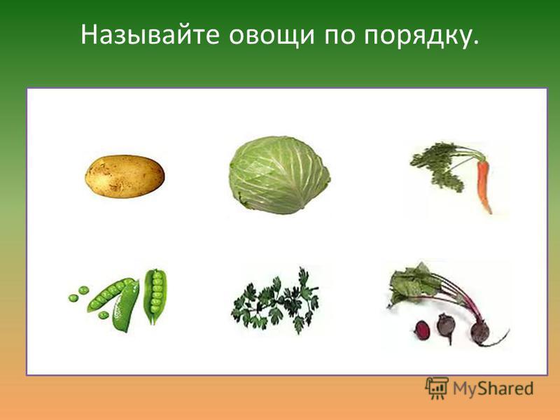 Какого овоща нет в стихотворении?