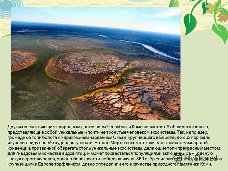Другим впечатляющим природным достоянием Республики Коми являются её обширные болота, представляющие собой уникальные и почти не тронутые человеком экосистемы. Так, например, громадные топи болота с характерным названием Океан, крупнейшего в Европе,