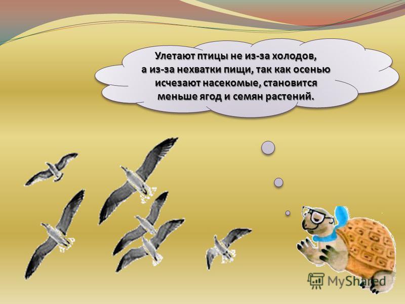 Рассмотрите рисунки и попробуйте догадаться, почему многие птицы улетают на зиму в тёплые края.