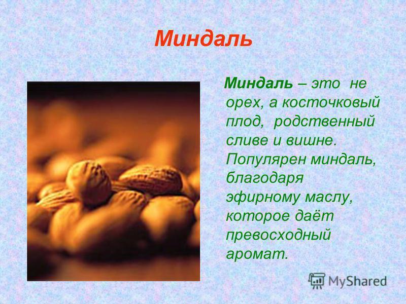 Миндаль Миндаль – это не орех, а косточковый плод, родственный сливе и вишне. Популярен миндаль, благодаря эфирному маслу, которое даёт превосходный аромат.