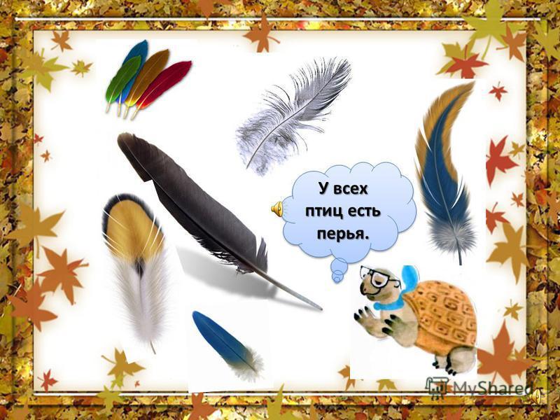 Птицы - это животные, тело которых покрыто перьями Не случайно птиц часто называют «пернатые»