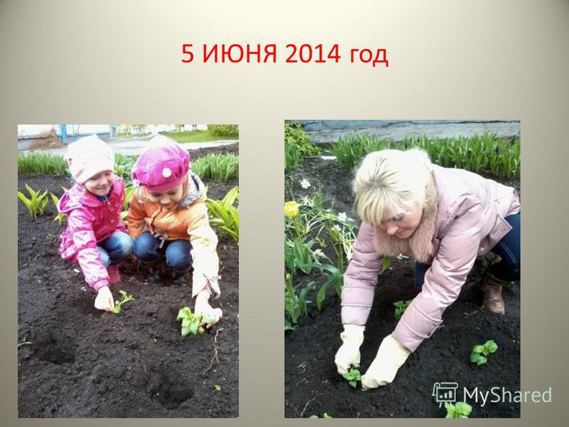5 ИЮНЯ 2014 год