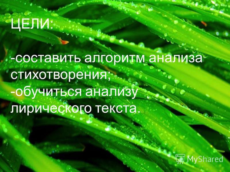 ЦЕЛИ: -составить алгоритм анализа стихотворения; -обучиться анализу лирического текста.