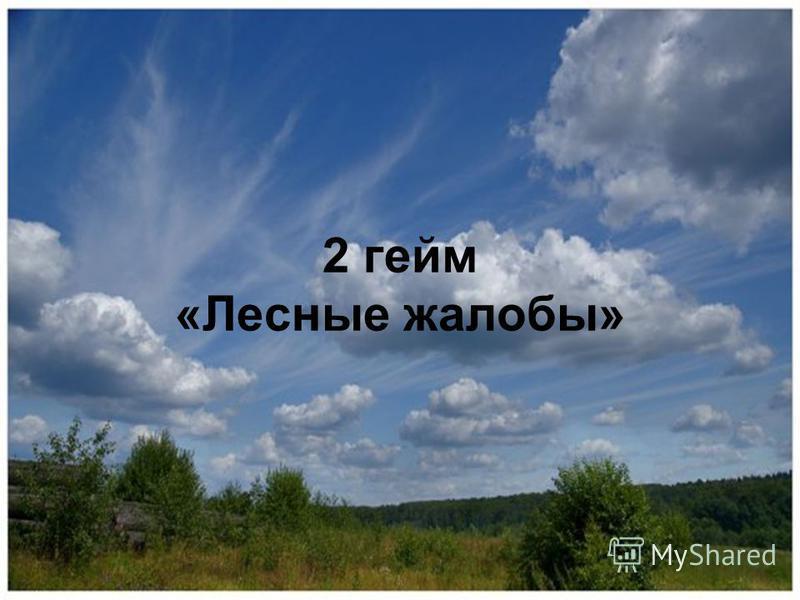 2 гейм «Лесные жалобы»