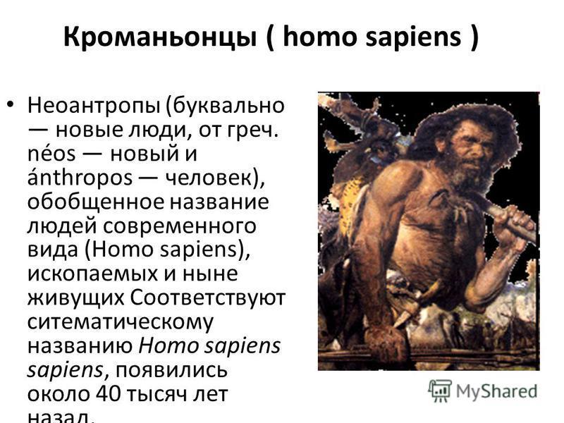 Кроманьонцы ( homo sapiens ) Неоантропы (буквально новые люди, от греч. néos новый и ánthropos человек), обобщенное название людей современного вида (Homo sapiens), ископаемых и ныне живущих Соответствуют ситематическому названию Homo sapiens sapiens