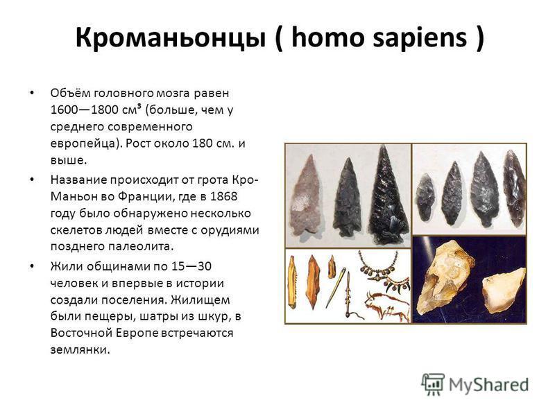 Кроманьонцы ( homo sapiens ) Объём головного мозга равен 16001800 см³ (больше, чем у среднего современного европейца). Рост около 180 см. и выше. Название происходит от грота Кро- Маньон во Франции, где в 1868 году было обнаружено несколько скелетов