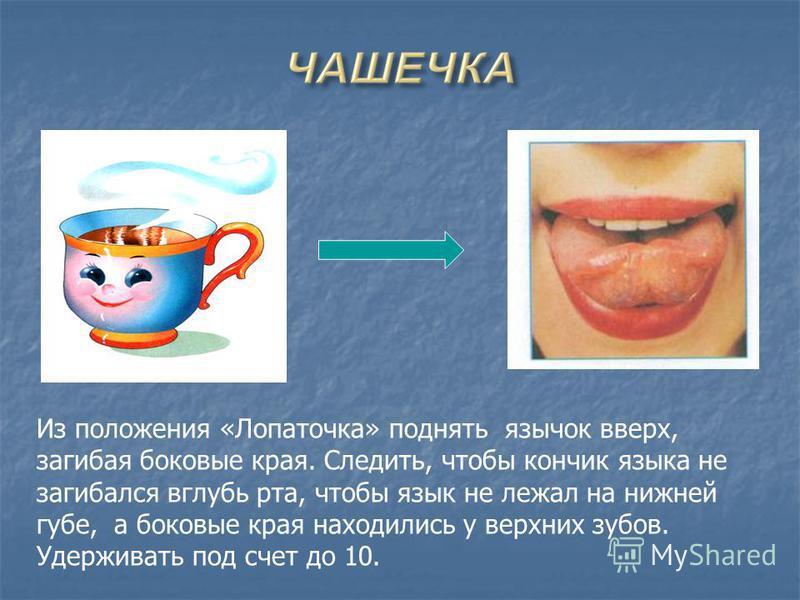 Из положения «Лопаточка» поднять язычок вверх, загибая боковые края. Следить, чтобы кончик языка не загибался вглубь рта, чтобы язык не лежал на нижней губе, а боковые края находились у верхних зубов. Удерживать под счет до 10.
