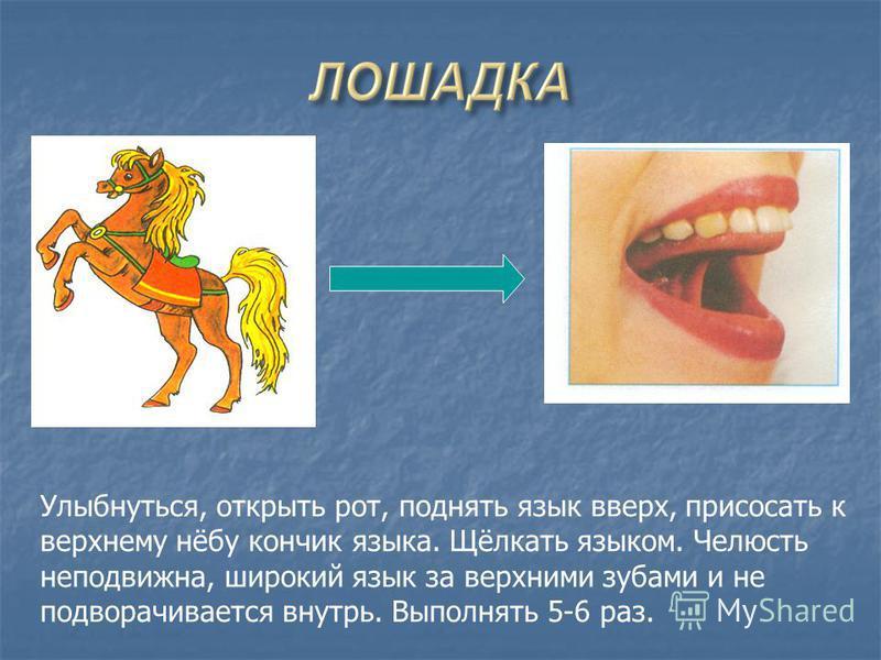 Улыбнуться, открыть рот, поднять язык вверх, присосать к верхнему нёбу кончик языка. Щёлкать языком. Челюсть неподвижна, широкий язык за верхними зубами и не подворачивается внутрь. Выполнять 5-6 раз.