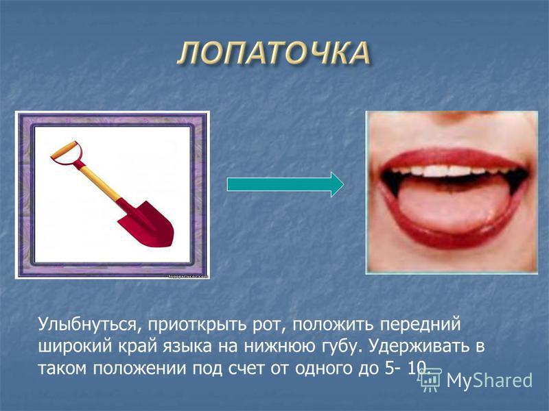 Улыбнуться, приоткрыть рот, положить передний широкий край языка на нижнюю губу. Удерживать в таком положении под счет от одного до 5- 10.