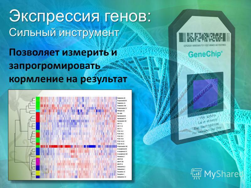 Экспрессия генов: Сильный инструмент Позволяет измерить и запрограммировать кормление на результат