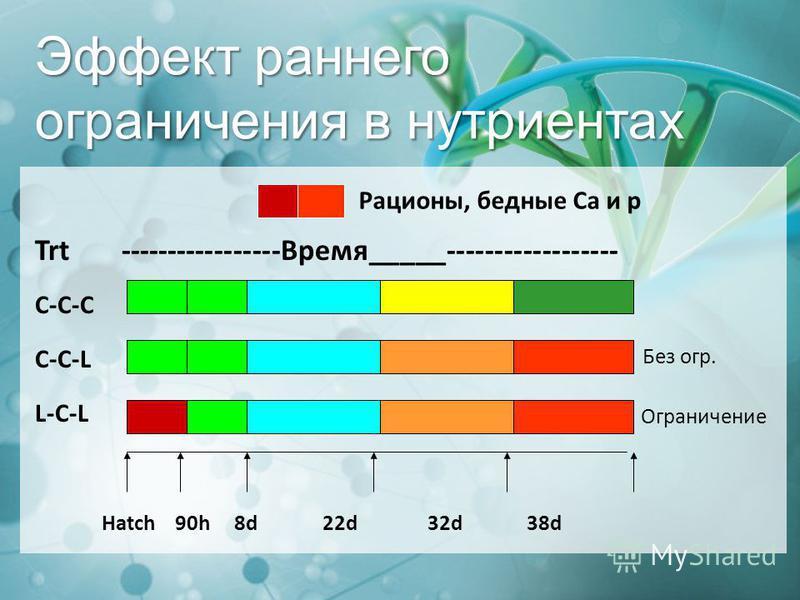 Эффект раннего ограничения в нутриентах Trt -----------------Время_____------------------ C-C-C C-C-L L-C-L Hatch 90h 8d 22d 32d 38d Рационы, бедные Ca и p Без огр. Ограничение