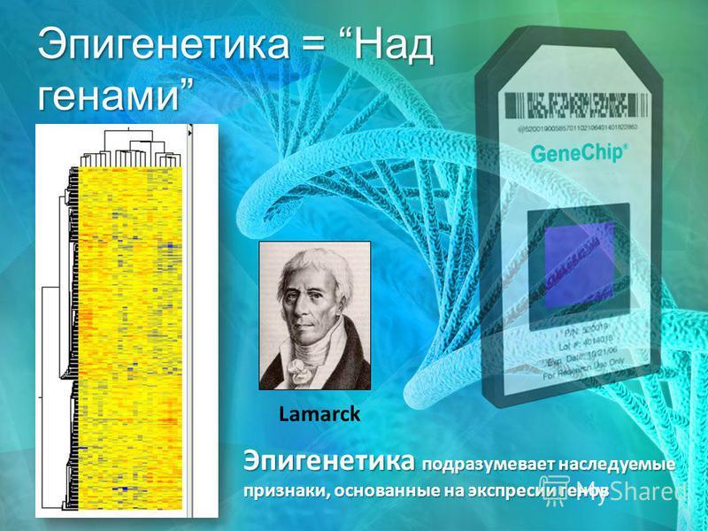 Эпигенетика = Над генами Эпигенетика подразумевает наследуемые признаки, основанные на экспрессии генов Lamarck