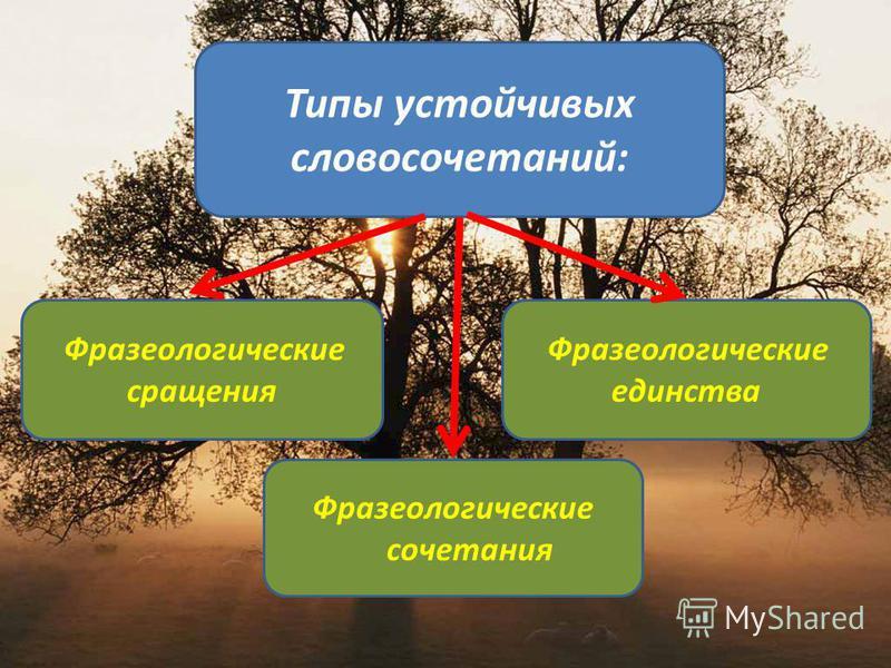 Типы устойчивых словосочетаний: Фразеологические сращения Фразеологические сочетания Фразеологические единства