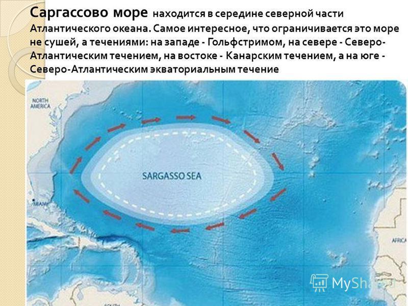 Саргассово море находится в середине северной части Атлантического океана. Самое интересное, что ограничивается это море не сушей, а течениями : на западе - Гольфстримом, на севере - Северо - Атлантическим течением, на востоке - Канарским течением, а