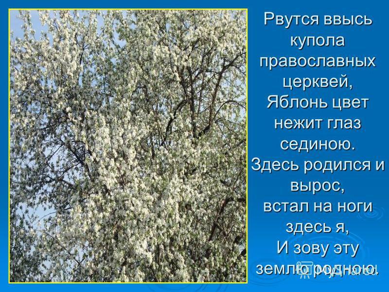 Рвутся ввысь купола православных церквей, Яблонь цвет нежит глаз сединою. Здесь родился и вырос, встал на ноги здесь я, И зову эту землю родною.