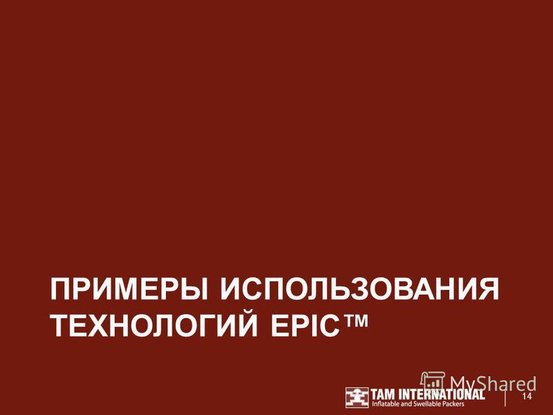 ПРИМЕРЫ ИСПОЛЬЗОВАНИЯ ТЕХНОЛОГИЙ EPIC 14
