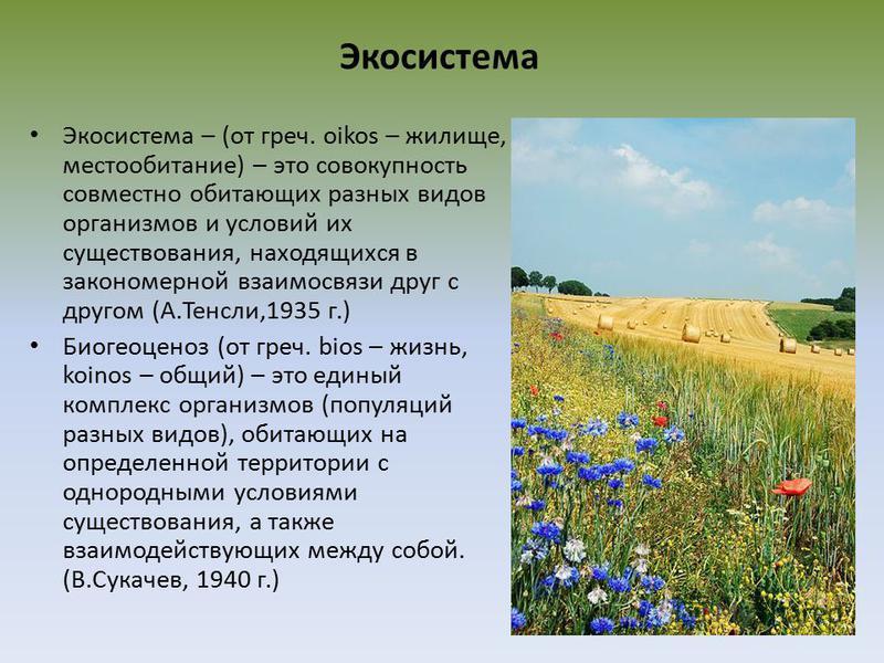 Экосистема Экосистема – (от греч. oikos – жилище, местообитание) – это совокупность совместно обитающих разных видов организмов и условий их существования, находящихся в закономерной взаимосвязи друг с другом (А.Тенсли,1935 г.) Биогеоценоз (от греч.