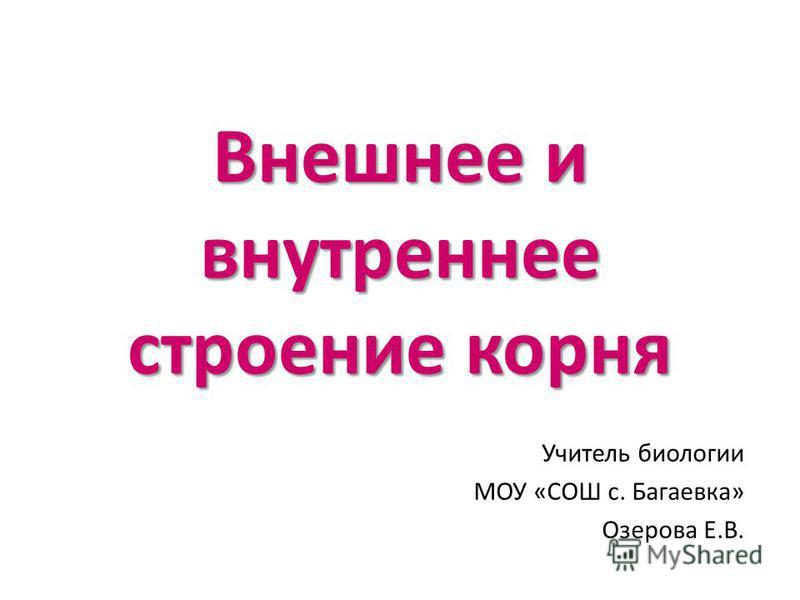 Внешнее и внутреннее строение корня Учитель биологии МОУ «СОШ с. Багаевка» Озерова Е.В.