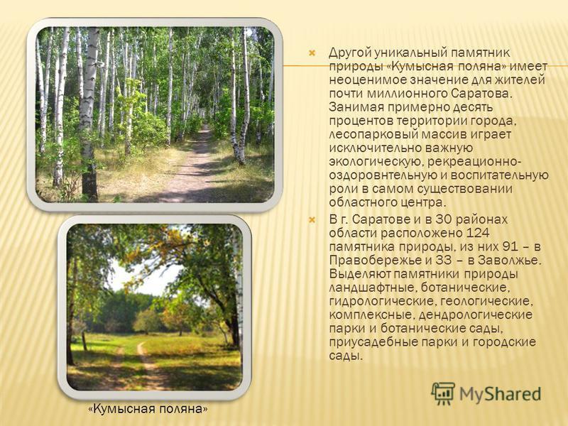 Другой уникальный памятник природы «Кумысная поляна» имеет неоценимое значение для жителей почти миллионного Саратова. Занимая примерно десять процентов территории города, лесопарковый массив играет исключительно важную экологическую, рекреационно- о