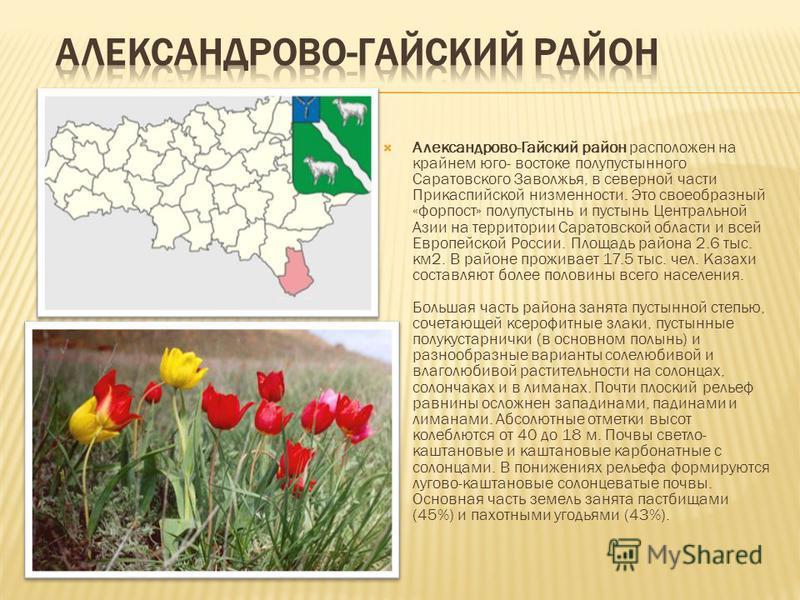 Александрово-Гайский район расположен на крайнем юго- востоке полупустынного Саратовского Заволжья, в северной части Прикаспийской низменности. Это своеобразный «форпост» полупустынь и пустынь Центральной Азии на территории Саратовской области и всей