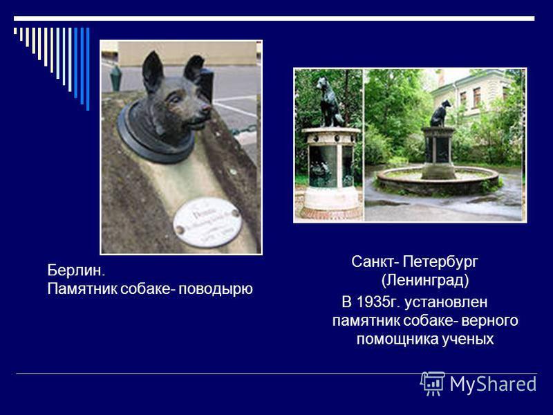 Берлин. Памятник собаке- поводырю Санкт- Петербург (Ленинград) В 1935 г. установлен памятник собаке- верного помощника ученых