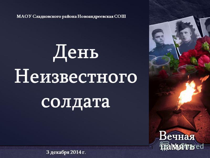 День Неизвестного солдата МАОУ Сладковского района Новоандреевская СОШ 3 декабря 2014 г.
