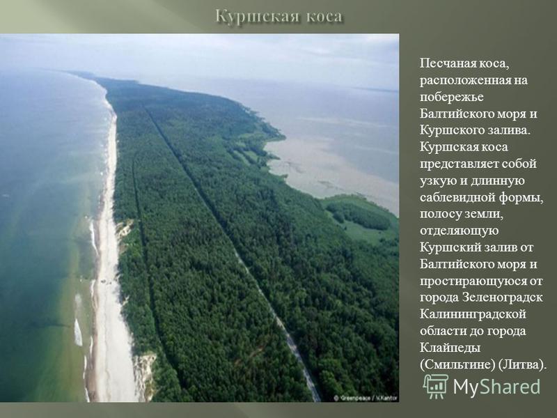 Песчаная коса, расположенная на побережье Балтийского моря и Куршского залива. Куршская коса представляет собой узкую и длинную саблевидной формы, полосу земли, отделяющую Куршский залив от Балтийского моря и простирающуюся от города Зеленоградск Кал