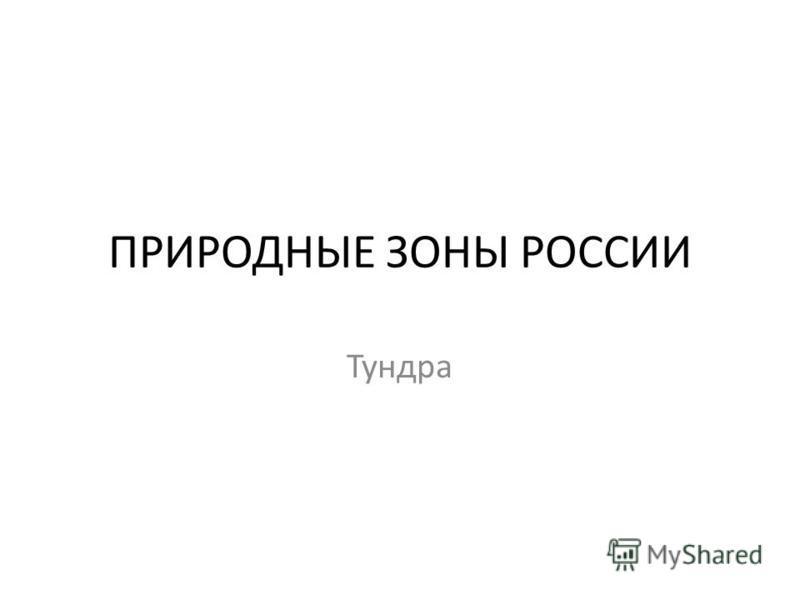 ПРИРОДНЫЕ ЗОНЫ РОССИИ Тундра