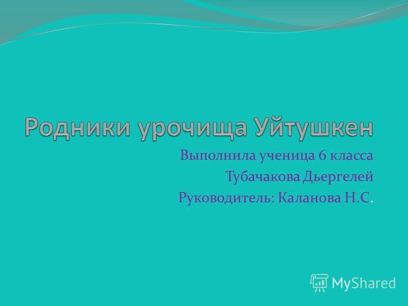 Выполнила ученица 6 класса Тубачакова Дьергелей Руководитель: Каланова Н.С.