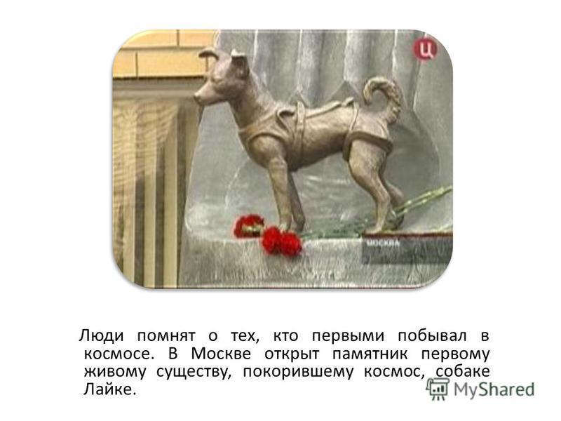 Люди помнят о тех, кто первыми побывал в космосе. В Москве открыт памятник первому живому существу, покорившему космос, собаке Лайке.