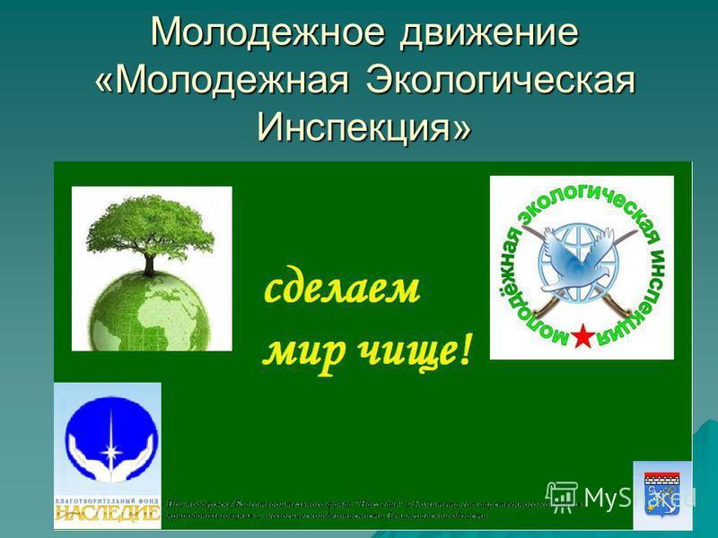 Молодежное движение «Молодежная Экологическая Инспекция»