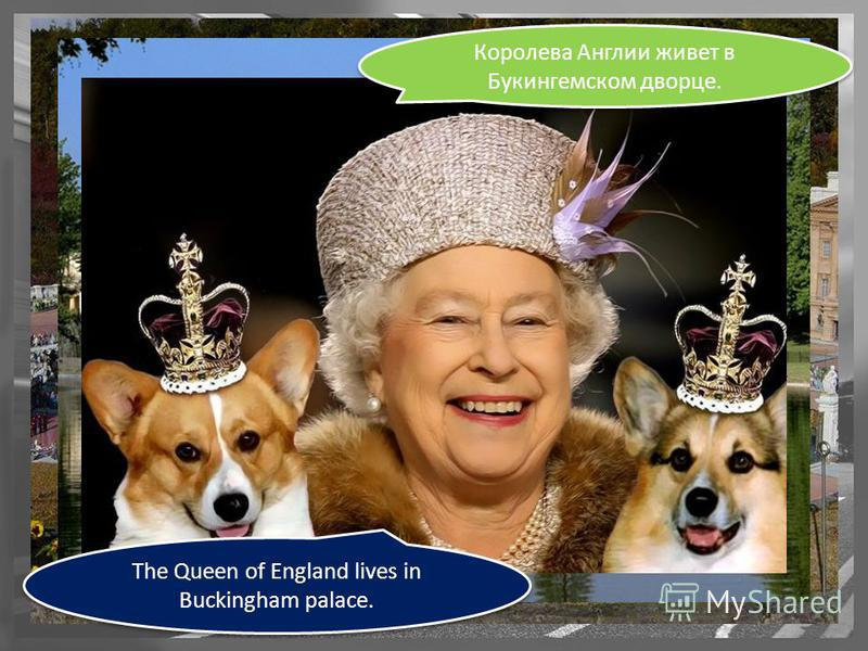 The Queen of England lives in Buckingham palace. Королева Англии живет в Букингемском дворце.