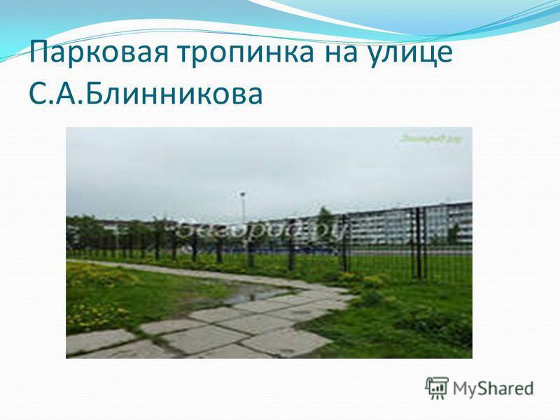 Парковая тропинка на улице С.А.Блинникова