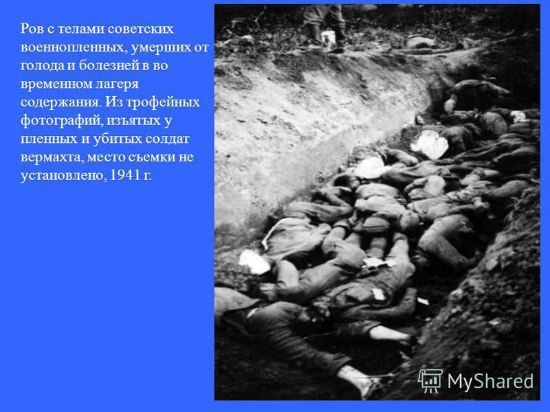 Ров с телами советских военнопленных, умерших от голода и болезней в во временном лагеря содержания. Из трофейных фотографий, изъятых у пленных и убитых солдат вермахта, место съемки не установлено, 1941 г.