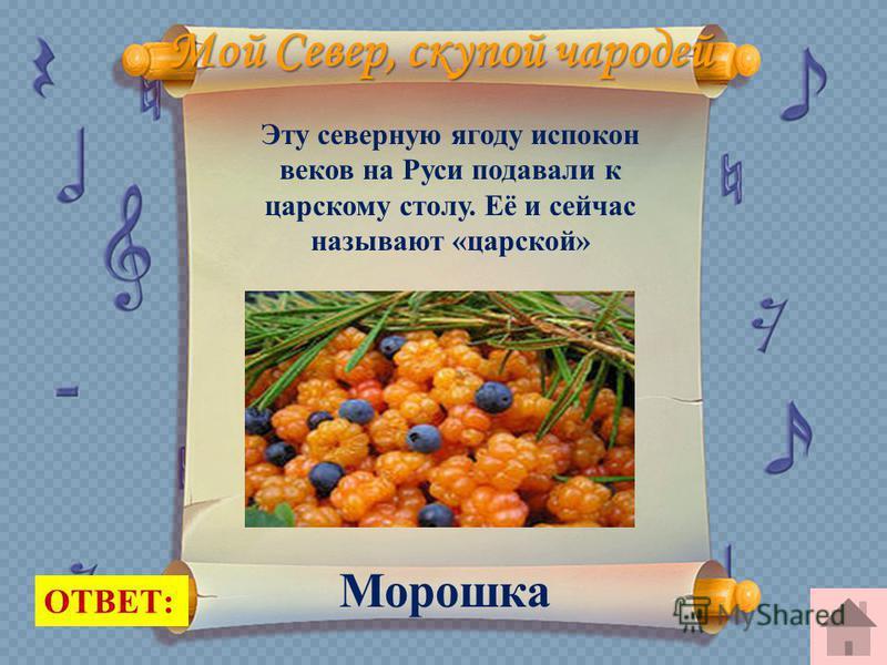 Мой Север, скупой чародей Эту северную ягоду испокон веков на Руси подавали к царскому столу. Её и сейчас называют «царской» ОТВЕТ: Морошка