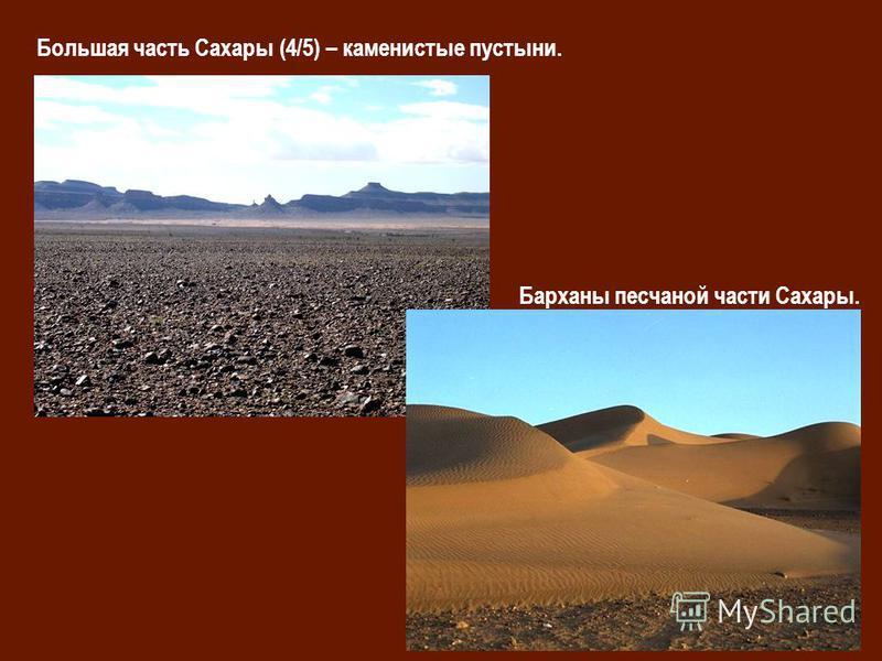 Большая часть Сахары (4/5) – каменистые пустыни. Барханы песчаной части Сахары.