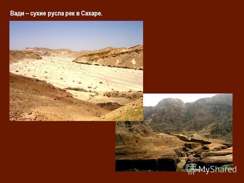 Вади – сухие русла рек в Сахаре.