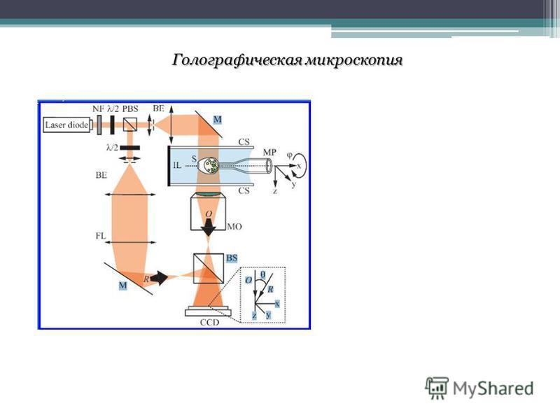 Голографическая микроскопия