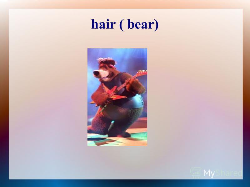 hair ( bear)