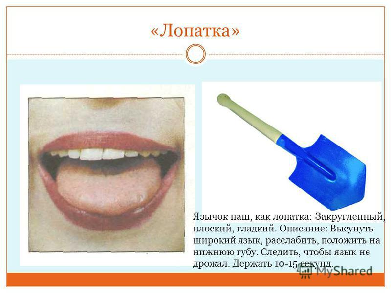 «Лопатка» Язычок наш, как лопатка: Закругленный, плоский, гладкий. Описание: Высунуть широкий язык, расслабить, положить на нижнюю губу. Следить, чтобы язык не дрожал. Держать 10-15 секунд.
