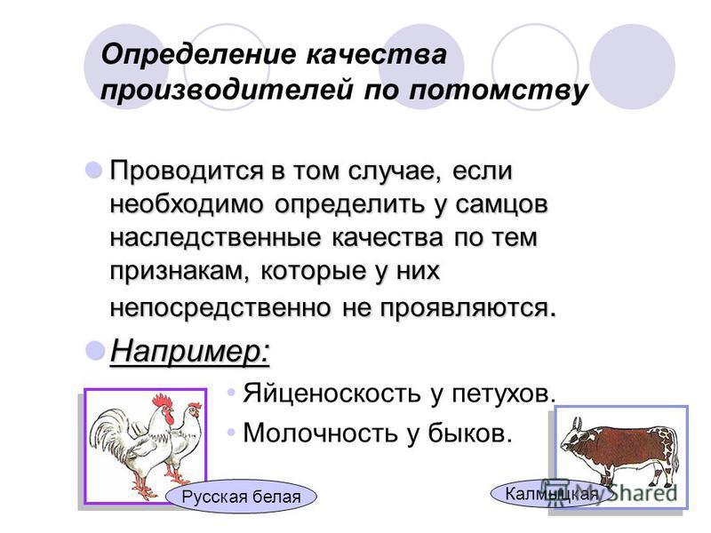 Определение качества производителей по потомству Проводится в том случае, если необходимо определить у самцов наследственные качества по тем признакам, которые у них непосредственно не проявляются. Проводится в том случае, если необходимо определить