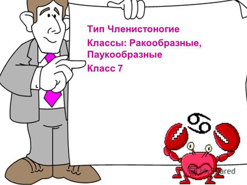 Тип Членистоногие Классы: Ракообразные, Паукообразные Класс 7