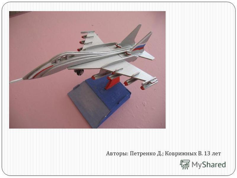 Авторы : Петренко Д.; Коврижных В. 13 лет
