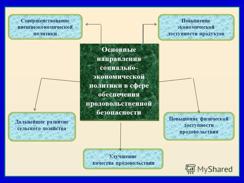 Основные направления социально- экономической политики в сфере обеспечения продовольственной безопасности Совершенствование внешнеэкономической политики Дальнейшее развитие сельского хозяйства Улучшение качества продовольствия Повышение физической до